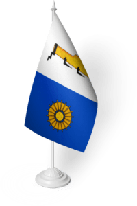 флаг Боровичи