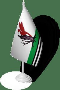флаг Елабуга